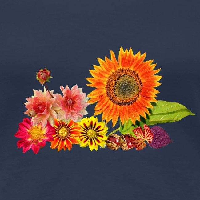 Herbst Sonnenblume Aster
