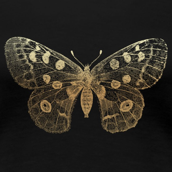 Butterfly-Chrysalis-trans
