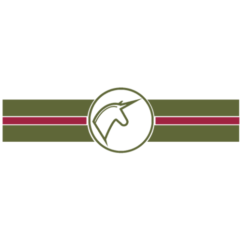 horses en vogue -khaki,bordeaux- - Frauen Premium T-Shirt