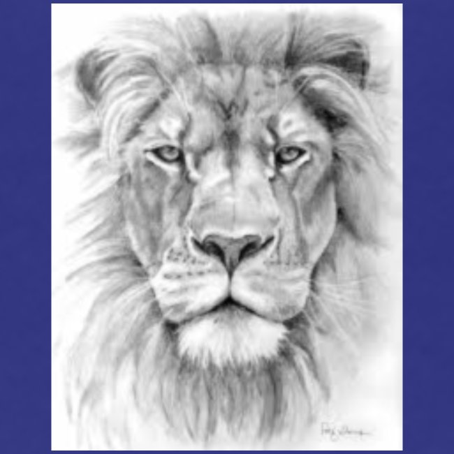 lion sketched png