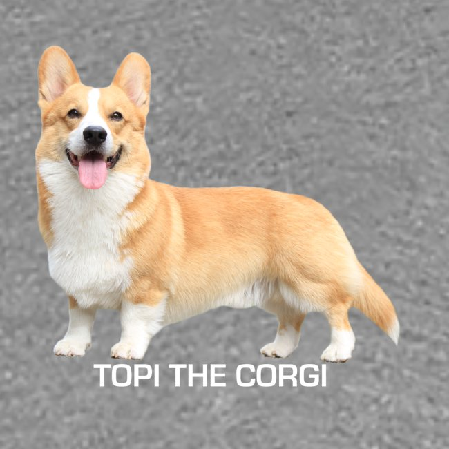 Topi the Corgi - White text