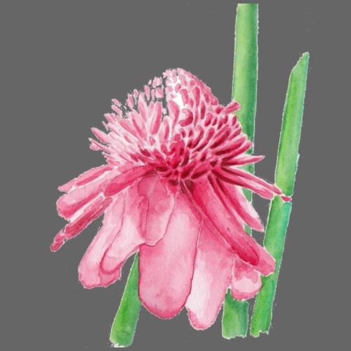 rose de porcelaine - T-shirt Premium Femme