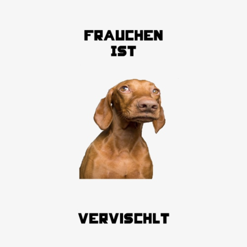 Vervischlt-Vizsla-Hund-Haustier-Liebling-Schatz