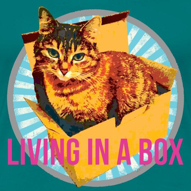 Katze - Leben in einer Boxx ;-)