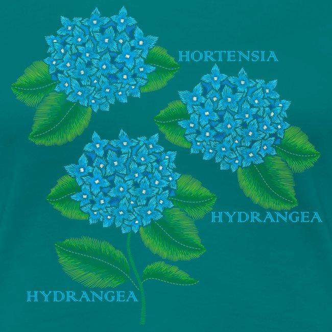Hydrangea - Dam