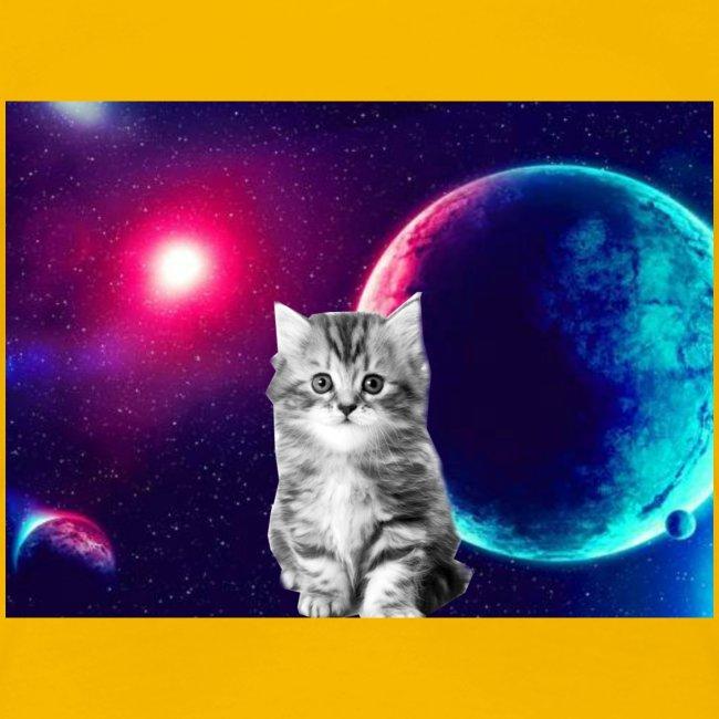Cute cat in space