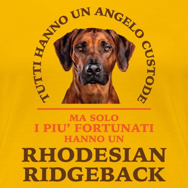 Rhodesian Ridgeback Angelo Custode Giallo
