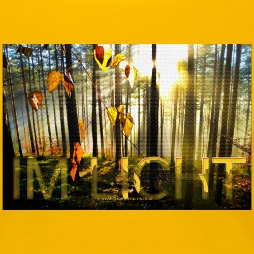 Herbstwald im Licht