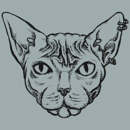 Sphynx Cat - Women's Premium T-Shirt