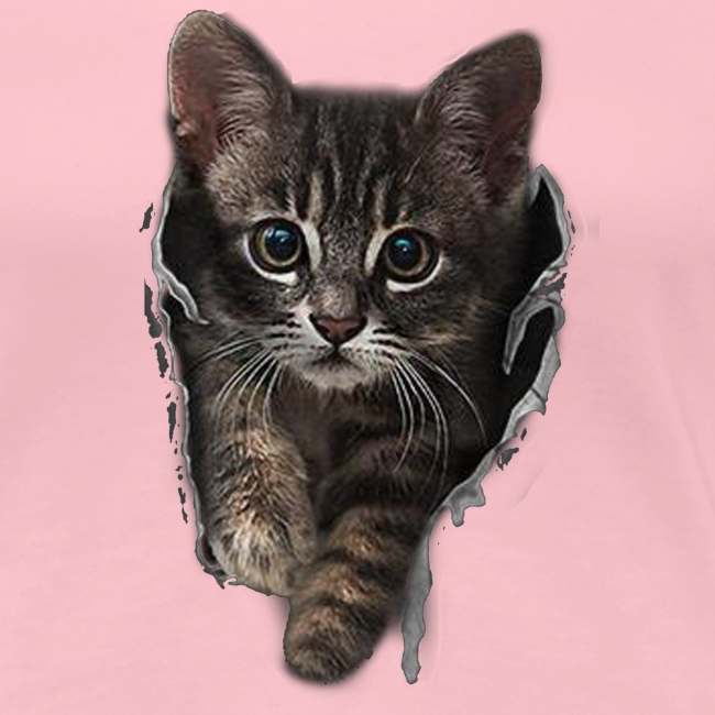 Vorschau: Katze Riss - Frauen Premium T-Shirt