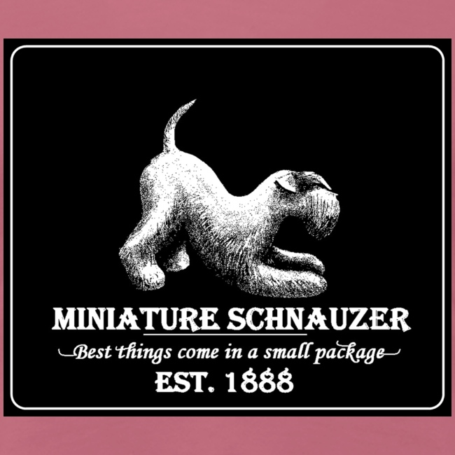 Miniature schnauzer vintage