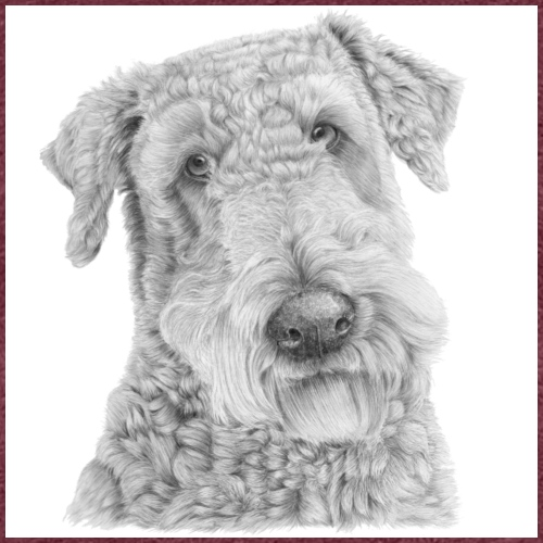 airedale terrier Poster - Dame premium T-shirt