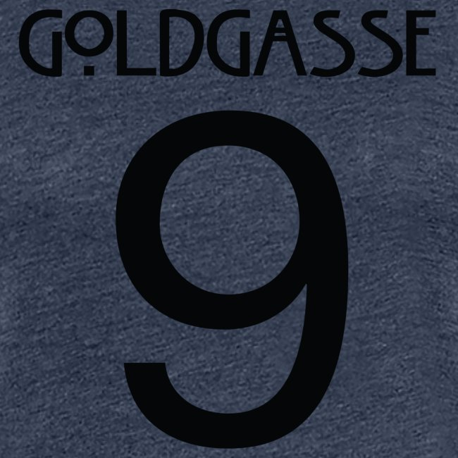 Goldgasse 9 - Back