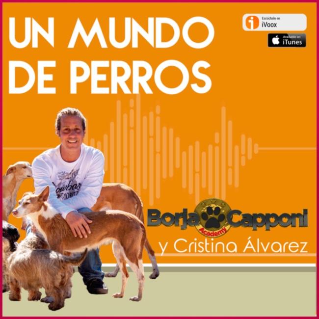Un mundo de perros 1 03