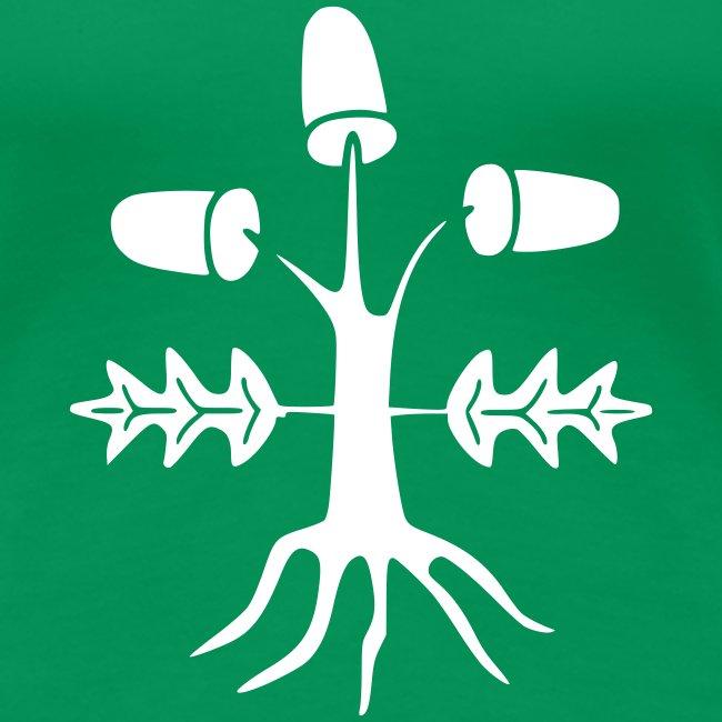 Dąb (oak, die Eiche)
