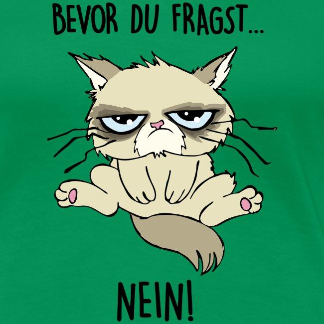 Vorschau: Bevor du fragst... NEIN - Frauen Premium T-Shirt