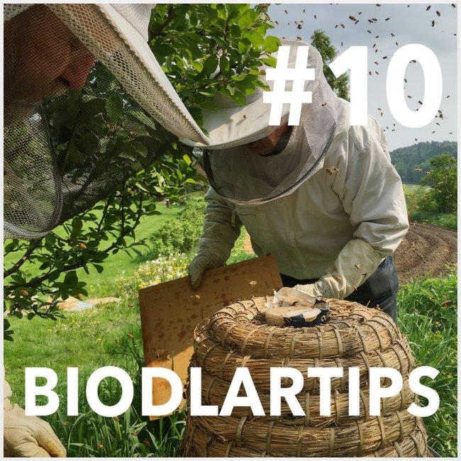 Biodlartips podcast #10