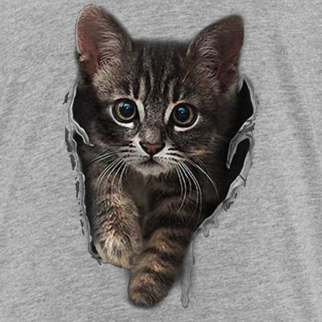 Vorschau: Katze Riss - Kinder Premium T-Shirt