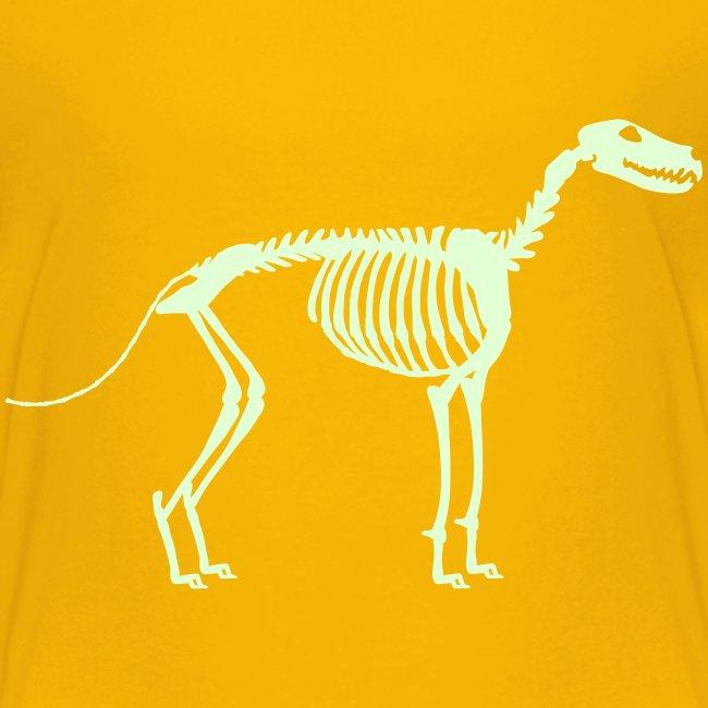 Paikka Luuranko Stay Skeleton