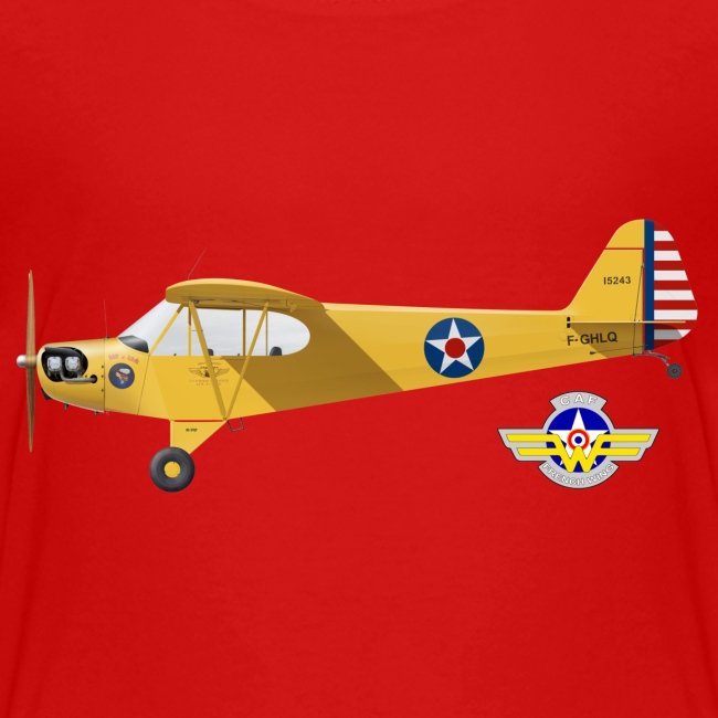 Piper Cub Spirit of Lewis
