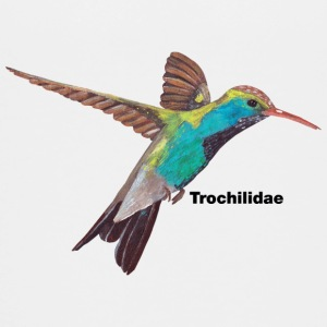 Hummingbird - Trochilidae - Teenage Premium T-Shirt
