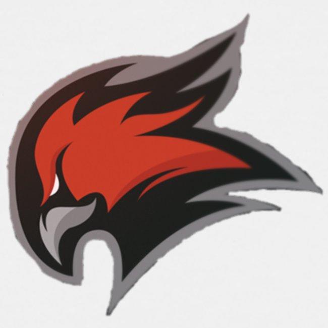 New T shirt Eagle logo /LIMITED/