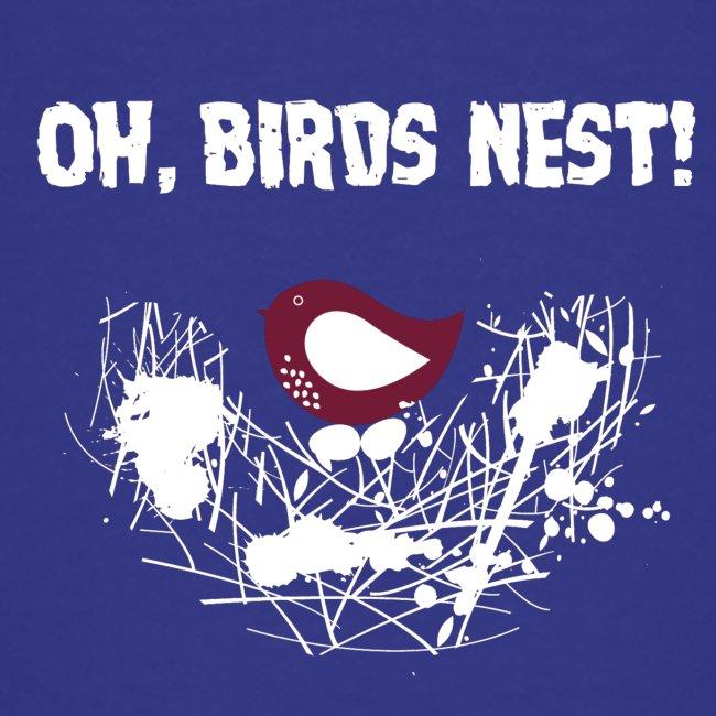 Oh BirdsNest With Red Bird