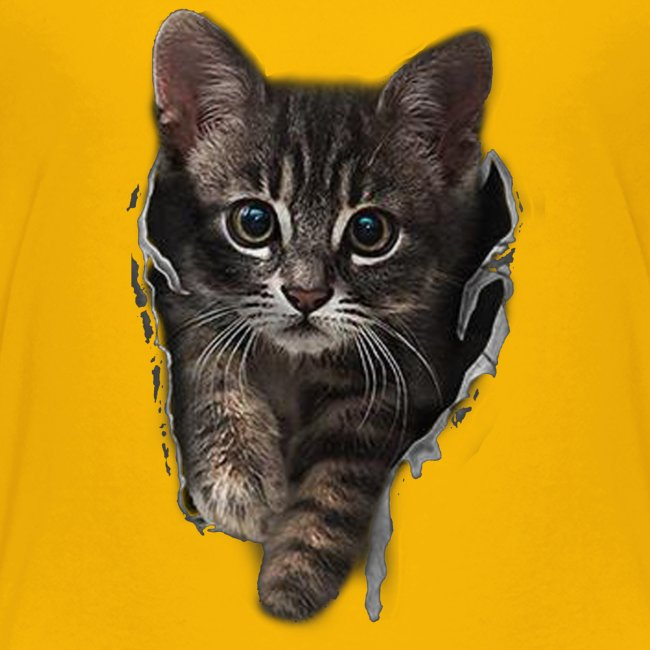 Vorschau: Katze Riss - Teenager Premium T-Shirt