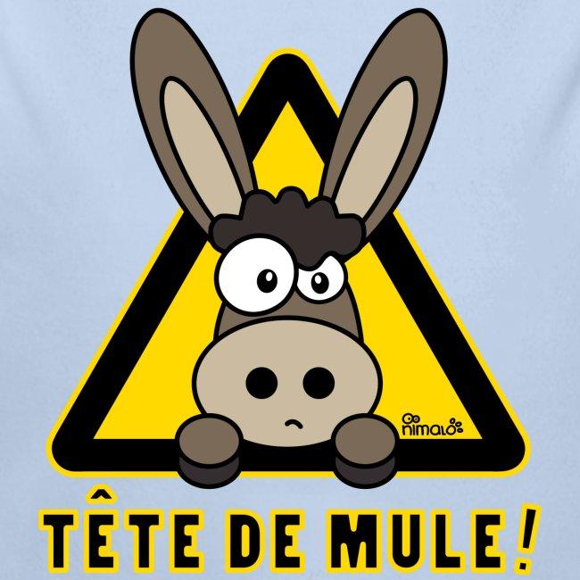 Âne, Tête de mule, tetu