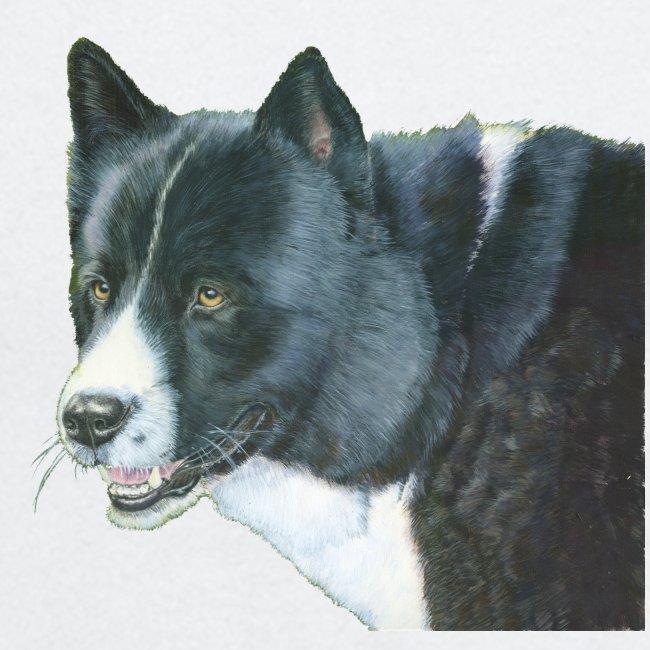 karelian beardog