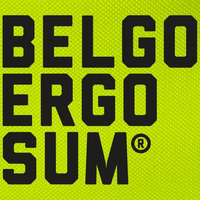 Belgo Ergo Sum