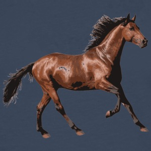 SWEET HORSE COLLECTION - Premium langermet T-skjorte for menn