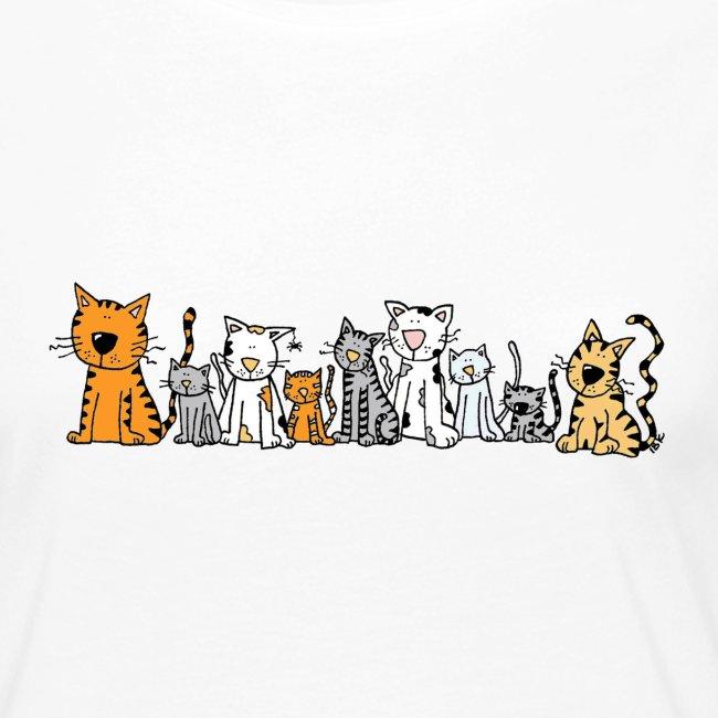 Cats & Cats