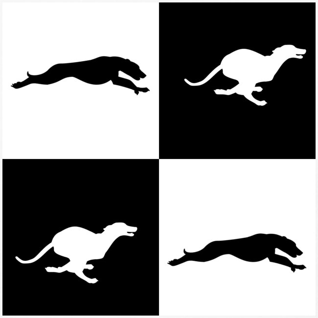 whippetsquares2 png