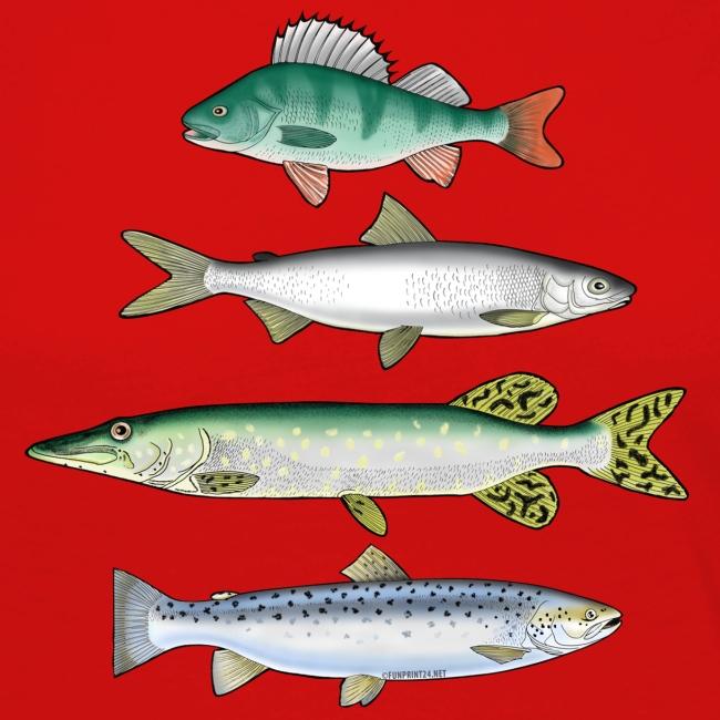FOUR FISH - Ahven, siika, hauki ja taimen tuotteet