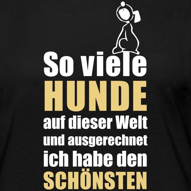 Vorschau: Der schönste HUND - Frauen Premium Langarmshirt