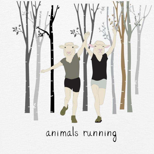 Moutons running