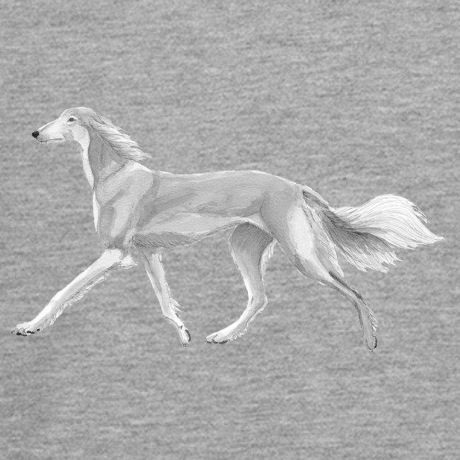 saluki - running