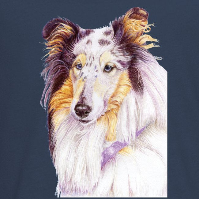 Collie bluemerle