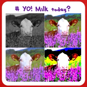 # Yo! Milk Today? - Premium langermet T-skjorte for tenåringer