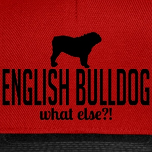 ANGLAIS BULLDOG whatelse - Casquette snapback