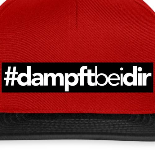 #dampftbeidir Schwarz - Snapback Cap