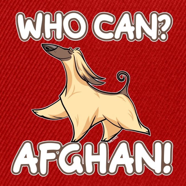 Who Can Afghan II