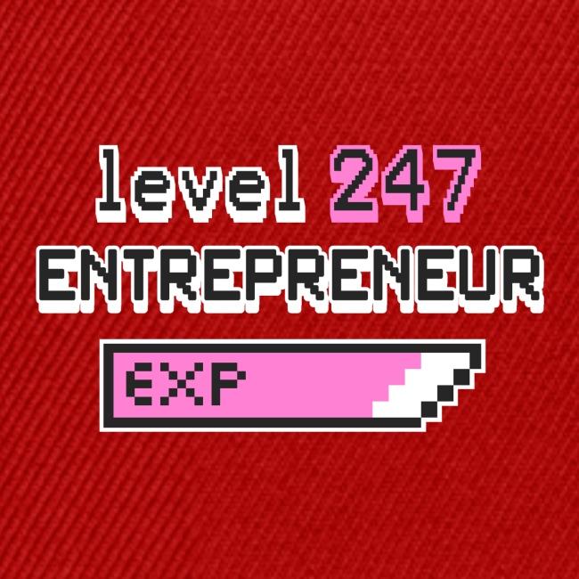 Level 247 Entrepreneur II