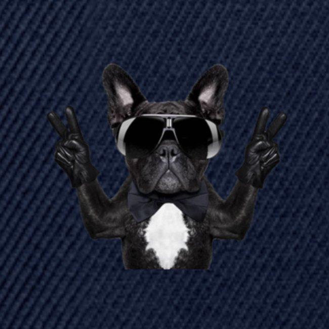 Cooler Hund