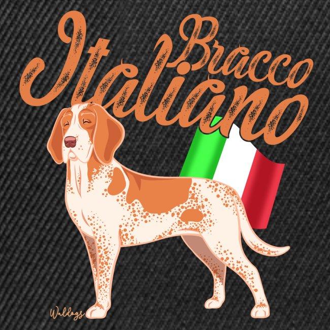 Bracco Italiano Flag 2