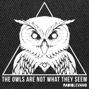 THE OWLS ARE NOT WHAT THEY SEEM-RADIOLEVANO - Snapback Cap