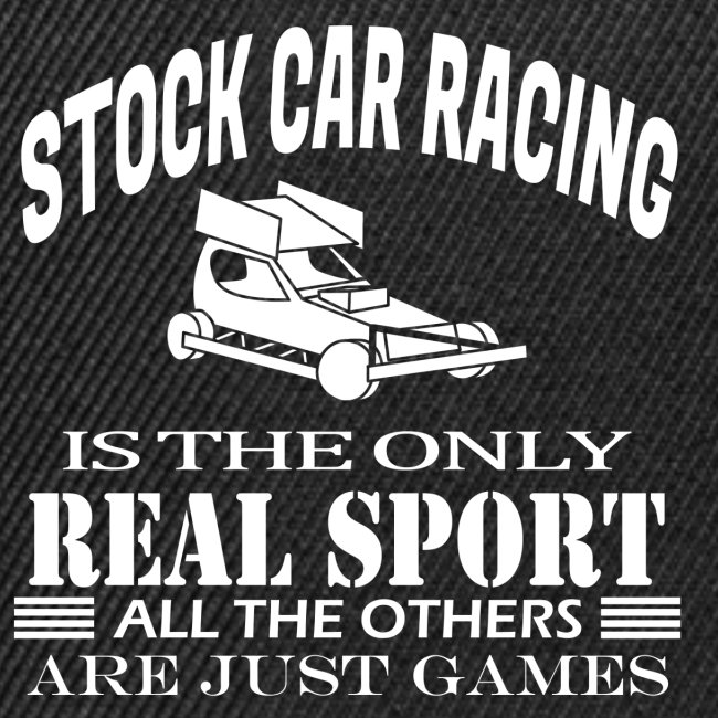 BRISCA Stock Car Racing car with chequered flags