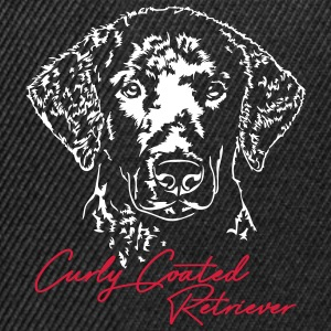 Curly coated retriever - Snapbackkeps