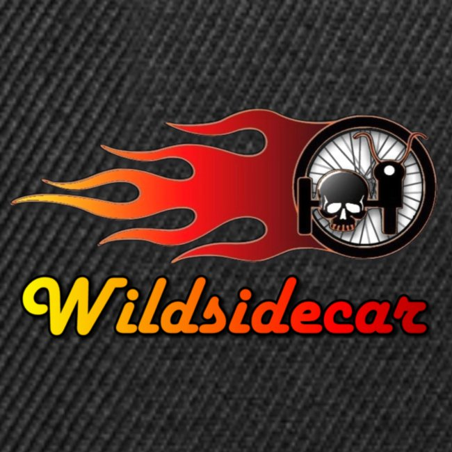 logo wildsidecar sans fond